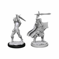 D&D Nolzur's Marvelous Miniatures Human Male Paladin, figurice